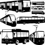 pubblicità autobus Roma e Milano